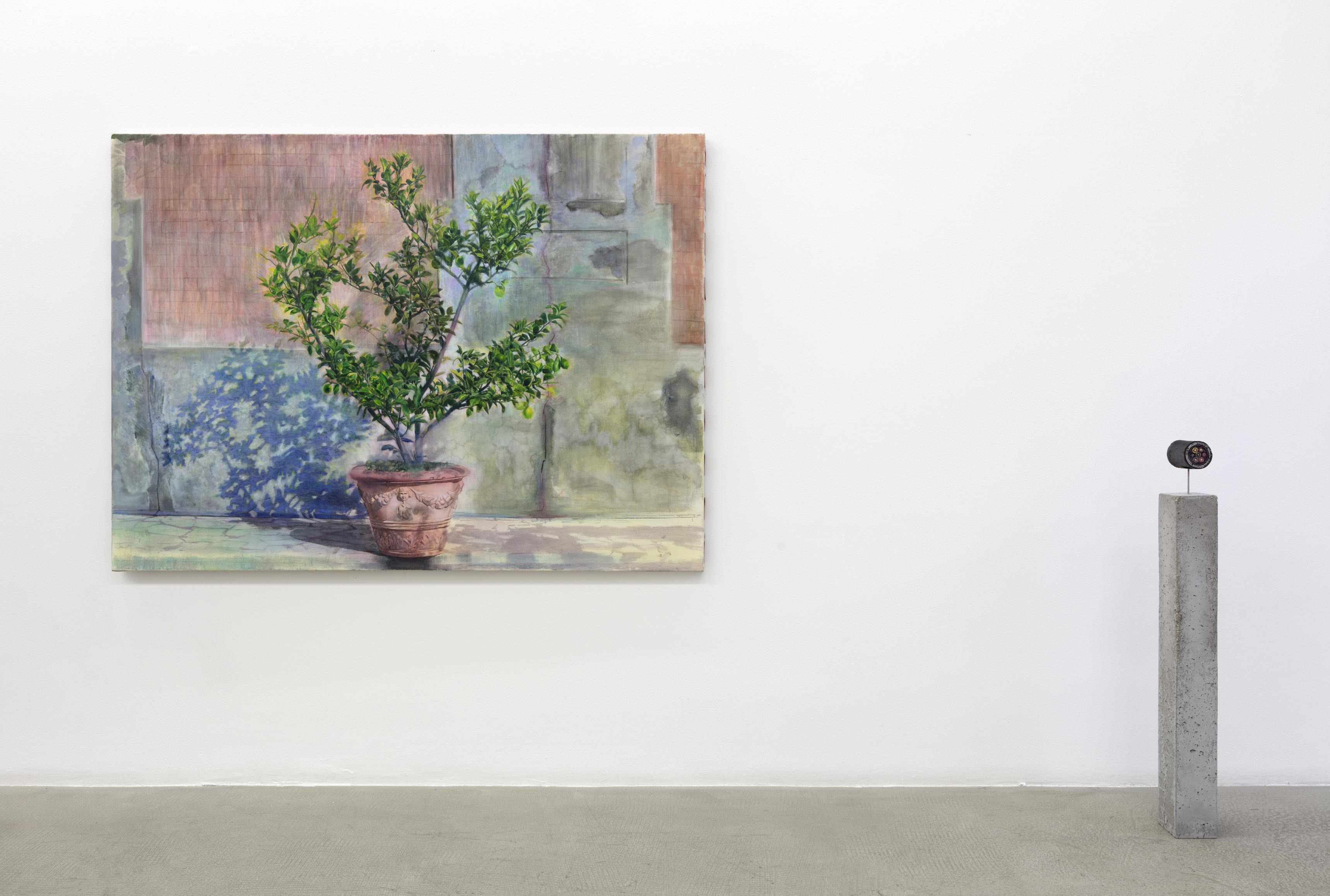 Vent'anni – Twenty years, Kaufmann Repetto, Milano