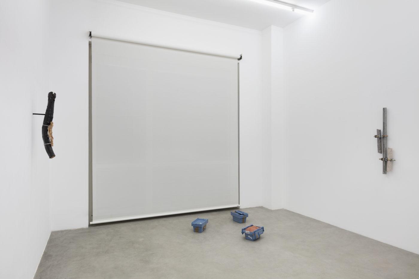 Daniel De Paula. Installation view at Francesca Minini, Milan. ph. Andrea Rossetti